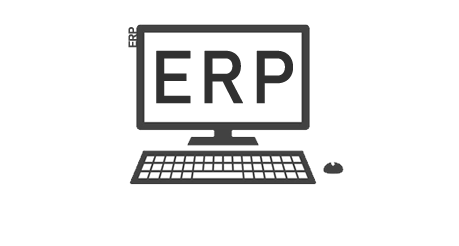 we offer ERP business systems and consultations