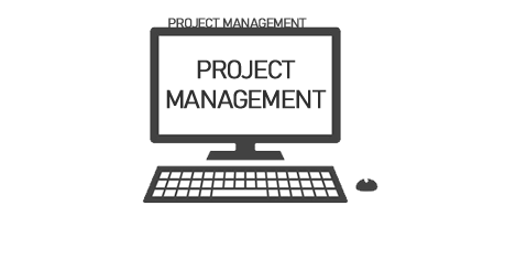 We offer CRM, ERM AND MRP integration project management